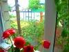 Уфа - Дома,Коттеджи,Таунхаусы - Коттедж в перспективной д. Тарабердино недалеко от Уфы в Кушнаренковском районе. - фото недвижимости 28