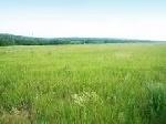 Уфа - Земельные участки - Продам земельный участок 260 соток в Башкортостане - Лот 2272