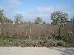 Предложение лот 58 - Болгария , Балчик - Участок земля для продажа, обеспечен водой и электричеством и находится на основной асфальтированной дороге деревни